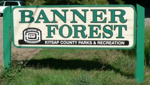 banner_forest_sign