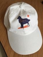160701 Ballcap